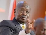 Présidentielle en Ouganda : Les Bazukulu aboient, Sevo passe